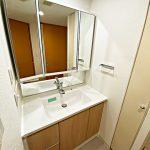 シャワー付き洗面化粧台(周辺)