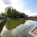 商店街の前は池になっています(周辺)