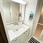シャワー付き洗面化粧台(内装)